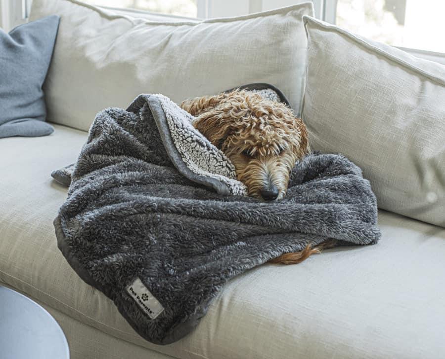 10 Reasons You Need a Waterproof Blanket