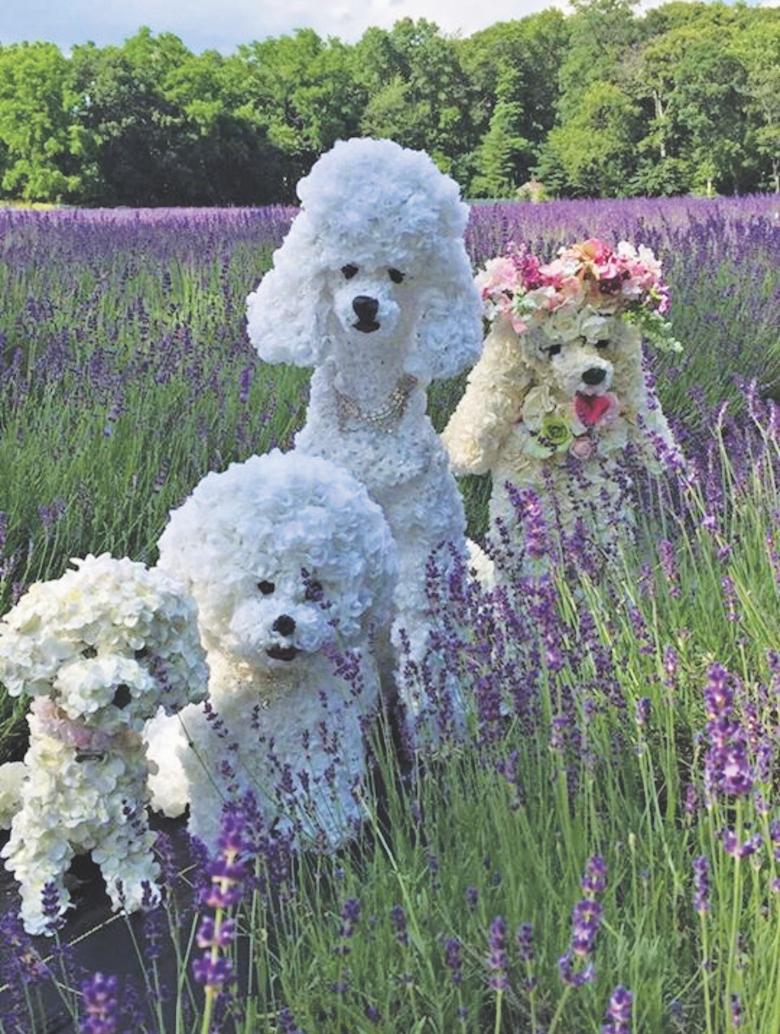 Impawssibly Elegant Dog Sculptures