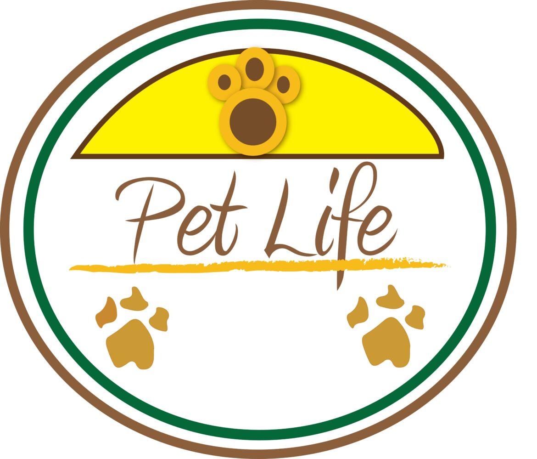 Tremendous Spike in Pet Adoption Rates amid Coronavirus Pandemic