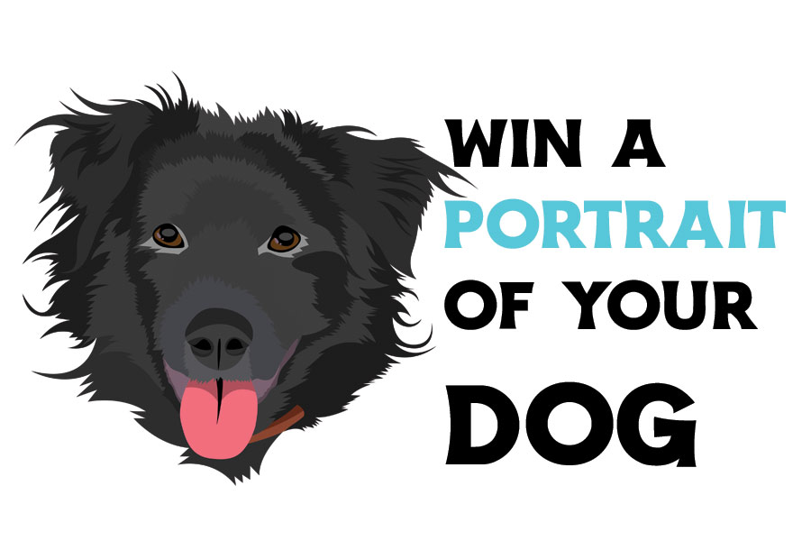 Win a Portrait of Your Dog!