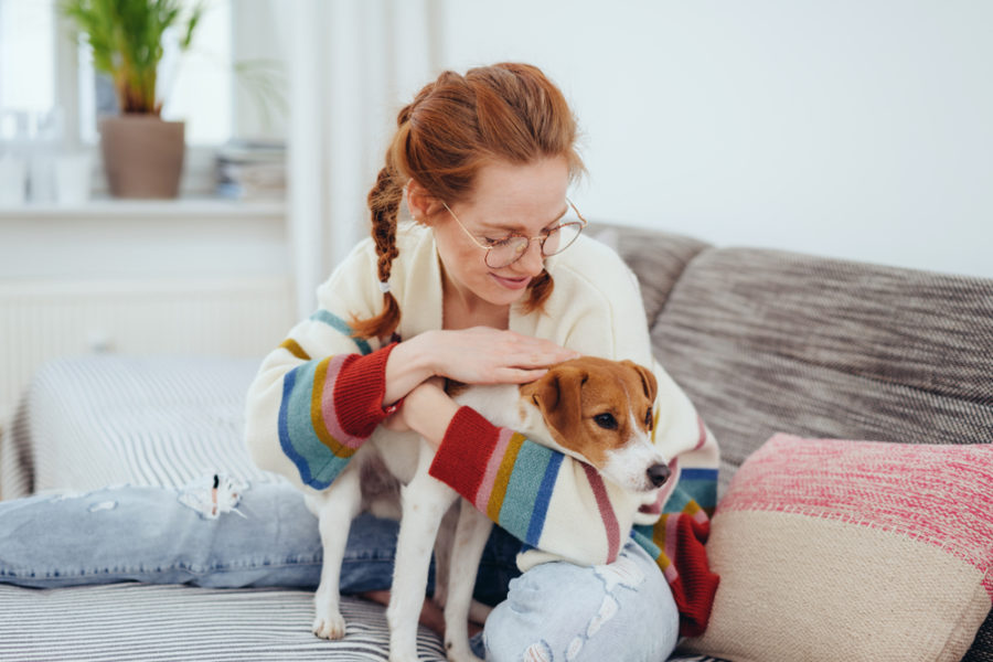 A home health check for your dog or cat