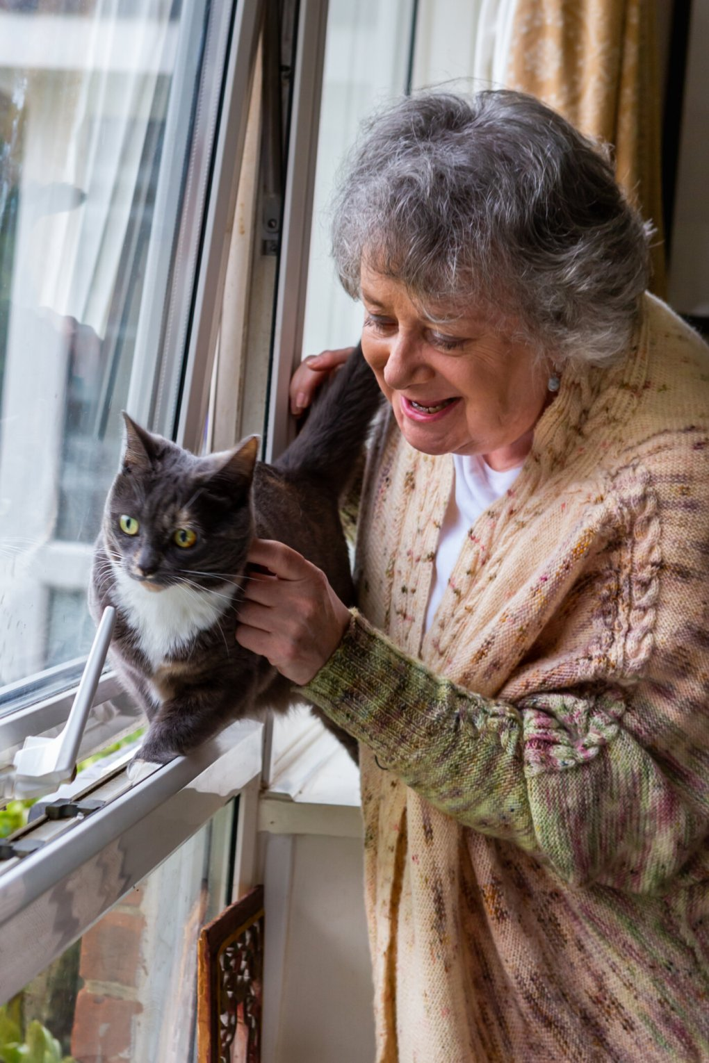 Cat Charity Celebrates Remarkable Lockdown Success