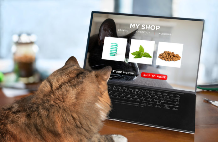 Fresh food meal kits for dogs and cats – delivered right to your door