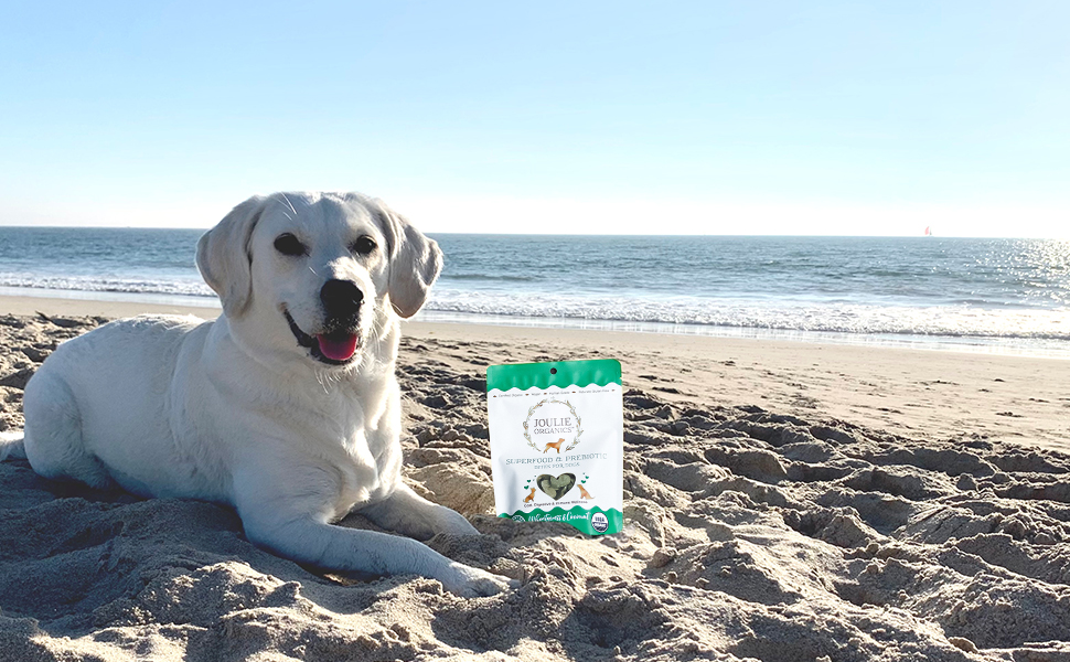 Joulie Organics: plant-based canine treats with a trigger