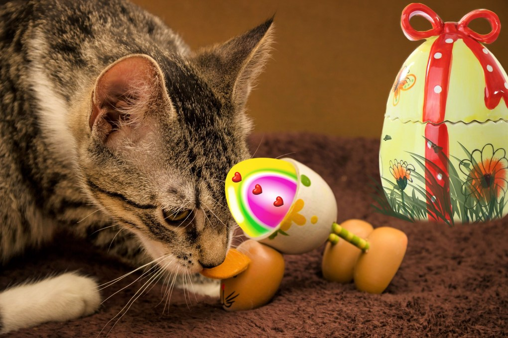 Leading Vet Charity Issues 'Care, Don't Share' Advice Ahead of Easter Celebrations