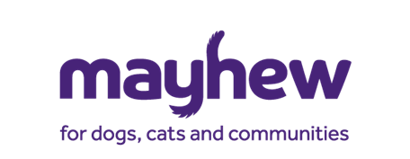 Mayhew Announces Leadership Change and Boost for International Animal Welfare Programme