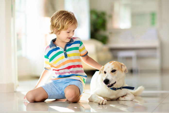 My dog doesn't like kids – what should I do?