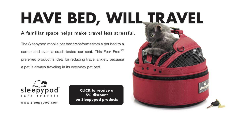 Saving The Geoffroy's Cat