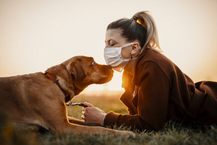 Top 5 ways our pets help us cope