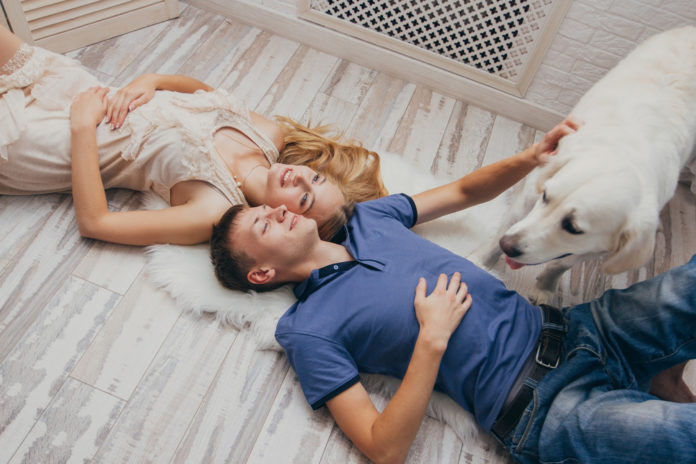 Valentine's Day pet safety tips from a veterinarian