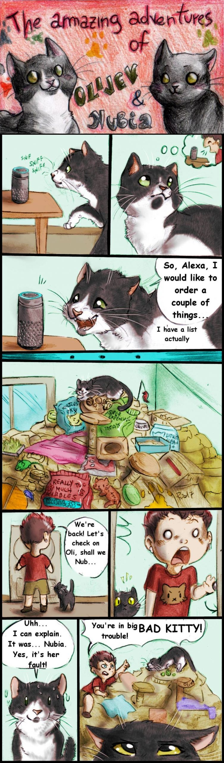Blast From the Past: Oliver the Cat and the @Amazonecho, what will he do?