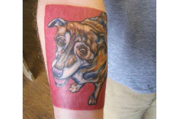 Dog Tattoos: Popular Breeds & Do's & Don'ts