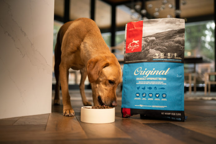 High-protein diets for pets – why quality and source matters