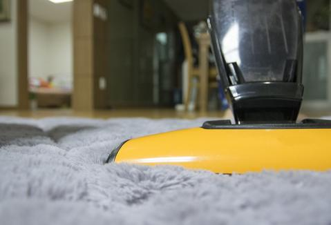 How-to Guide: Cleaning A Dog Bed Without A Removable Cover