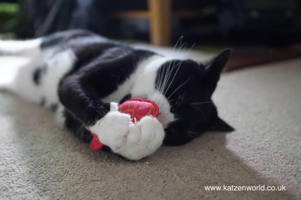 Oliver & Nubai: Arrival of the FreakMEOWt catnip toys PART 3