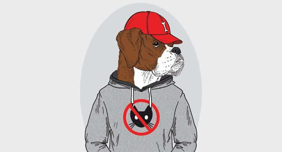 Rapper Dog Names – Inspired by Hip Hop Culture
