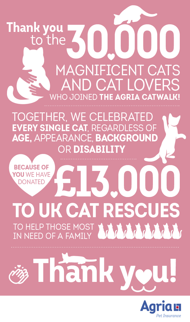 Thousands of Cat-Lovers Unite with Agria Pet Insurance to Donate £13,000 to Struggling UK Animal Rescues