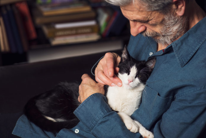 10 ways to senior pet proof your home