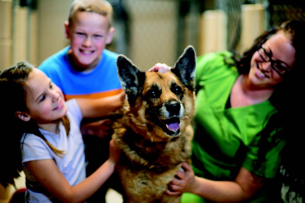 Bringing Home Fido: 4 Rules for Happiness