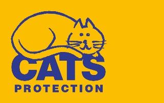 Cats Protection: Teamwork Makes the Scream Work on The Transylvanian Trek!