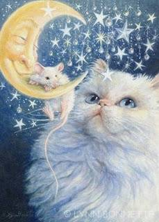 Purrsday Poetry: Cats as Radiant Beings