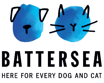 Rescue Dog Raises Motherless Kittens at Battersea