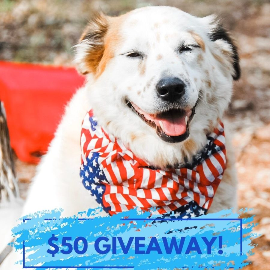Win a $50 Gift Card!