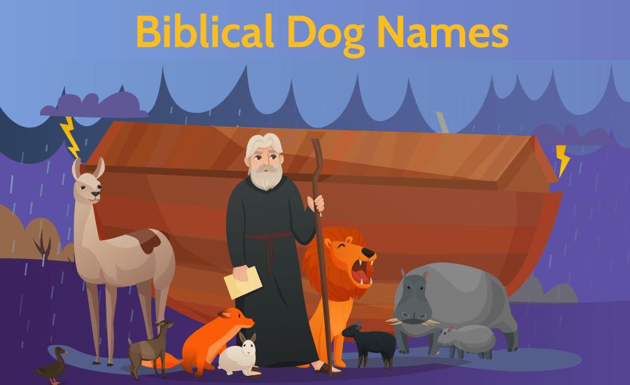 Biblical Dog Names