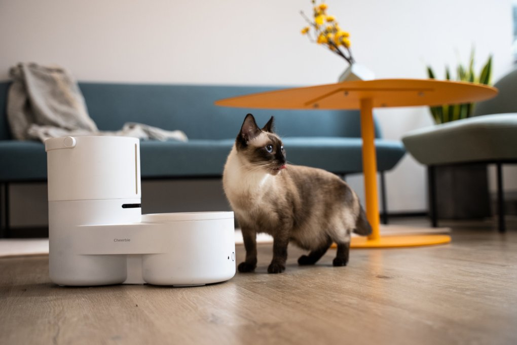 Cheerble Launches Drinkie, Your Pet's Favorite Self-Cleaning Dispenser