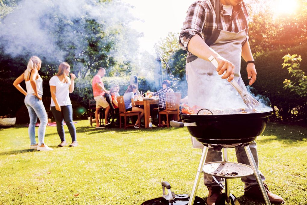 How To Safely Enjoy A BBQ Around Your Cat This Summer