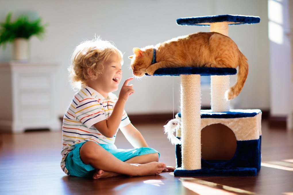 Pets and Children Academic Research Presented by UK Experts