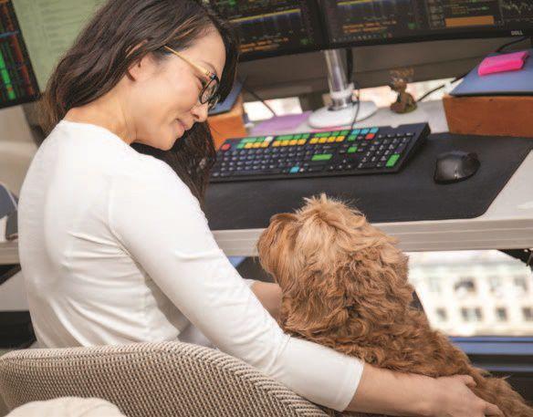 Petting Dogs Boosts Thinking Skills