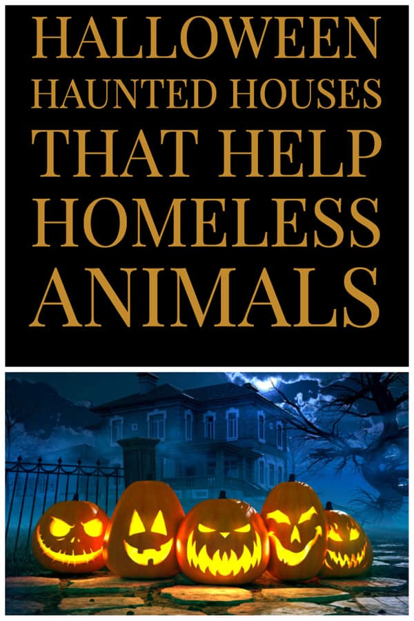 2021 Halloween Haunted Houses that Help Homeless Animals