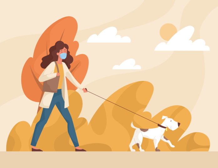 8 ways to socialize your new dog — when you have to social distance