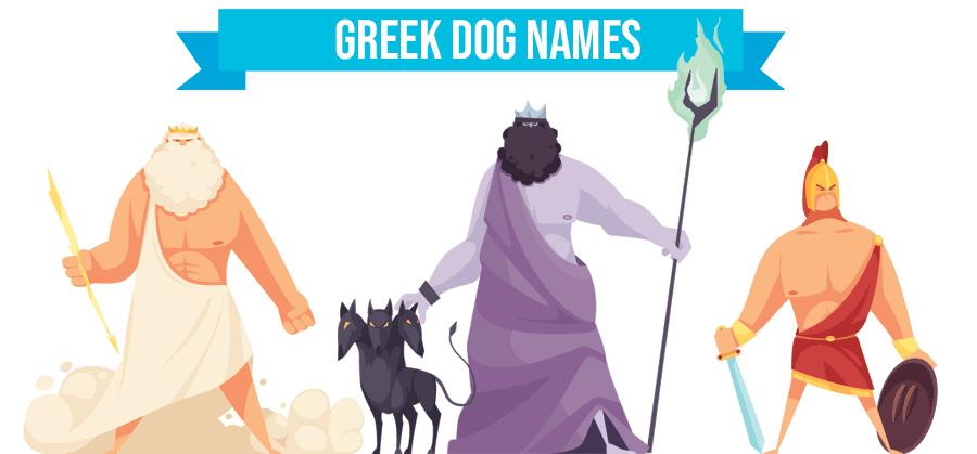 Greek Dog Names – 90+ Cultural, Cool Ideas